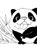 logo_panda--2-