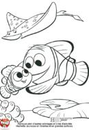 Marin et Nemo