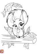 L'écureuil sur sa branche