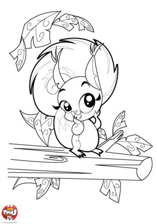 Coloriage: L'écureuil sur sa branche