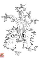 Deux hérissons