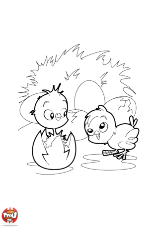 Coloriage : dépêche-toi d'imprimer gratuitement ce super coloriage spécial Pâques sur TFou.fr! Découvre de magnifiques petits poussins qui viennent juste de sortir de leur oeuf. Utilise tes plus beaux crayons de couleur pour décorer ce magnifique coloriage selon tes envies et tes goûts. Tu pourras ainsi l'offrir à tes amis ou à ta famille le jour de la fête de Pâques. Tu peux aussi l'accrocher dans ta chambre pour la décorer facilement. Regarde vite tous les beaux coloriages que TFou.fr t'a préparés pour la fête de Pâques. Tu vas trop t'éclater cette année avec TFou.fr!
