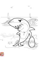 Requin sur la plage