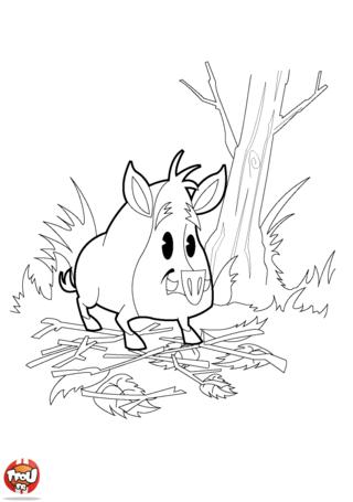 Coloriage: Sanglier dans la forêt