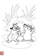 Taupes à lunettes