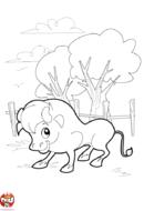 Gentil taureau