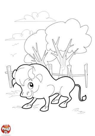 Coloriage: Gentil taureau