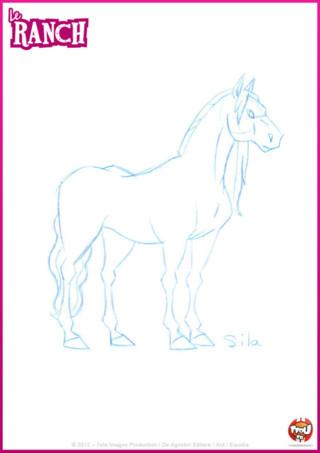 Coloriage: utilise ce coloriage de Sila, le cheval d'Angelo, pour le colorier selon tes goûts en l'imprimant gratuitement sur TFou.fr !
