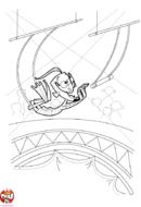 Saut au trapèze