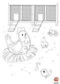 Coloriage-Ferme-La poule et ses poussins