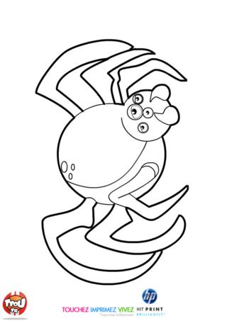 Coloriage: Araignée d'Halloween