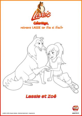 Voici un beau coloriage de Lassie et Zoé. Tu n'as plus qu'à l'imprimer, le colorier puis le coller dans ta chambre. Zoé est une fillette géniale, avec Lassie, ils forment tous les 2 un duo hors du commun ! Elles partagent avec bonheur leurs aventures ! Regarde comme Zoé et Lassie jouent bien ensemble. Choisis les plus belles couleurs et colorie ce magnifique coloriage gratuit comme tu le souhaites. Imprime aussi plein d'autres coloriages de Lassie et Zoé sur TFou.fr.